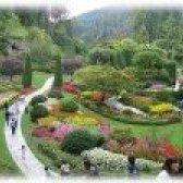 Облаштування садових доріжок